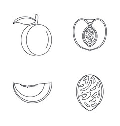 Peach tree slices fruit icons set outline style vector