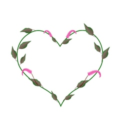Red Amaranth Leaves in A Heart Shape vector image