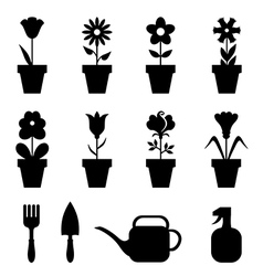 pot flower set vector image vector image