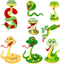 cartoon snake collection set vector image