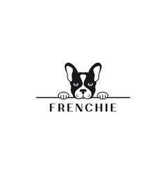 frenchie bulldog logo bulldog banner on white vector image
