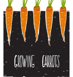 Growing Carrots Freehand Drawing and Lettering vector image