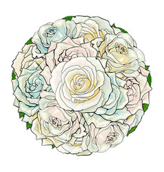 hand drawn white rose bouquet isolated vector image