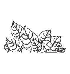 figure leaves together icon vector image