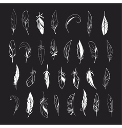 set of different hand drawn feathers on vector image vector image