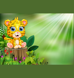 Cartoon happy baby leopard standing on tree stump vector