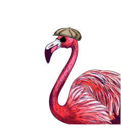 Familiar pink flamingo in cap and black sunglasses vector
