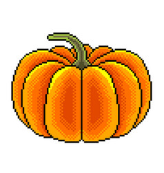 pixel big pumpkin detailed isolated vector image