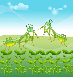 Praying mantis grasshopper cartoon vector