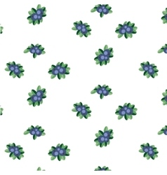 Blueberry pattern vector image