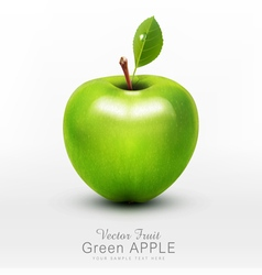 green apple with green leaf isolated vector image vector image