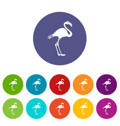 Flamingo set icons vector