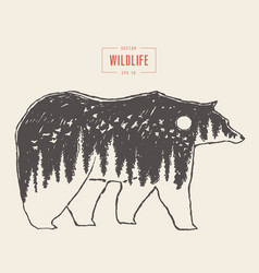 Silhouette wild bear forest wildlife drawn vector