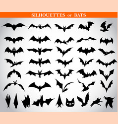 Silhouettes of bats vector