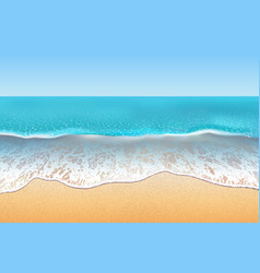 tropical beach sand and soft vector image