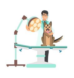 Veterinarian with dog in vet clinic vector