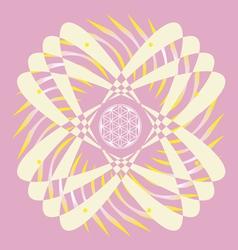 flower of life seed pink mandala vector image