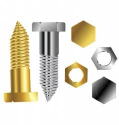screws vector image vector image