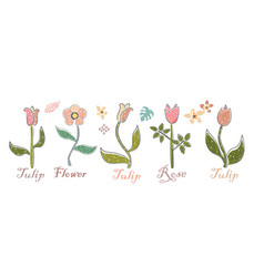 Beautiful set with hand drawn flowers elegant vector