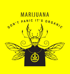 creative banner for legalize marijuana with beetle vector image
