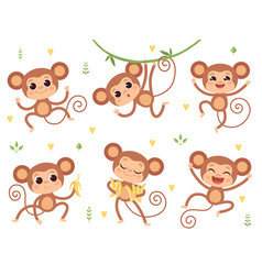 cute monkeys jungle wild animals balittle vector image
