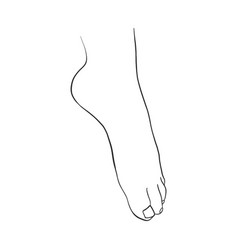 Hand drawn women foot vector