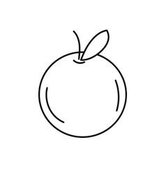 Line delicious and healthy orange fruit vector