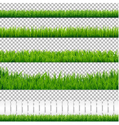 Realistic green grass borders vector