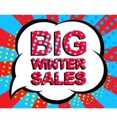 Sale poster with BIG WINTER SALE text Advertising vector image