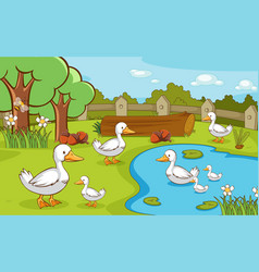 scene with ducks in pond vector image