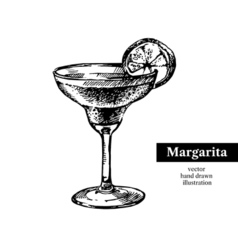 Hand drawn sketch cocktail margarita vintage vector image vector image