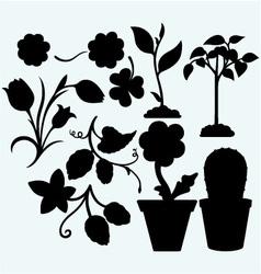Set plants vector image vector image