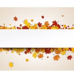 Autumn banner with maple leaves vector image