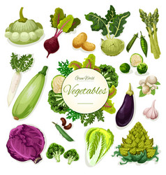 green vegetables and beans cartoon poster design vector image