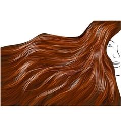 beautiful brown hair vector image