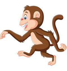 cartoon funny monkey walking on white background vector image