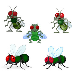 cartoon green fly collection set vector image