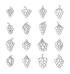 grape wine bunch icons set outline style vector image