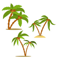 set palm in cartoon style design element vector image