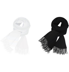 white and black scarf vector image