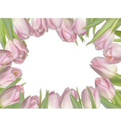 Flowers background with tulips EPS 10 vector image