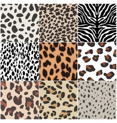 animal skin seamless pattern vector image vector image