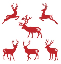 Christmas deer stags vector image vector image