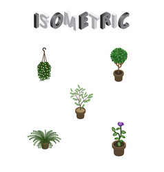 Isometric plant set of plant fern tree and other vector
