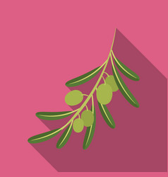 Olive brancholives single icon in flat style vector