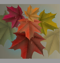 Red maple leaves background and dew drops vector