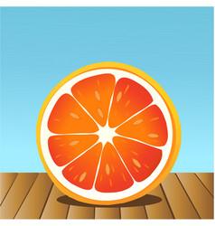 Summer grapefruit vector