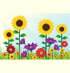 Sunflowers floral design background vector