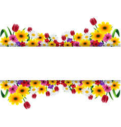 tropical flowers banner vector image