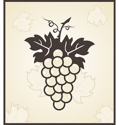 retro engraving of grapevine vector image